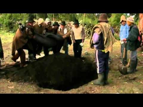 Jarjacha vs Pishtaco - Trailer Oficial 2012