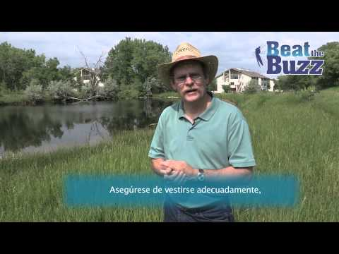 view West Nile Virus - Spanish video