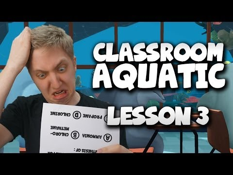 Classroom Aquatic - Top Of The Class!! - Lesson 3 video