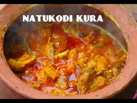 Natukodi curry in matti kunda// country chicken curry in clay pot/ old style chicken curry