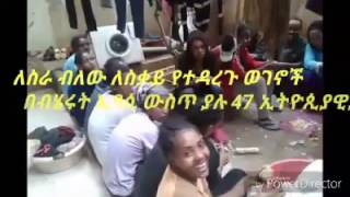 A Cry for Help- Ethiopians In Beirut