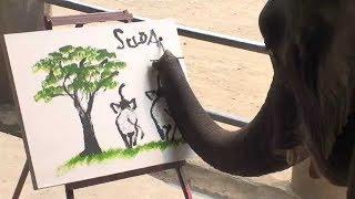 প্রানীগুলোর কাজ দেখলে লজ্জা পাবেন আপনিও    Top 10 Intelligent Animals