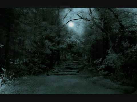 Forest Stream - Mel Kor