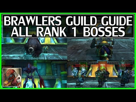 WoW Legion Brawler's Guild Guide All Rank 1 Bosses (Oso. Grumplefloot. Ooliss. Warhammer Council)