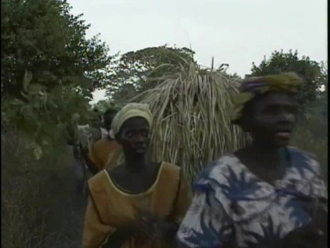 Senegal Travel Doc  Part 10