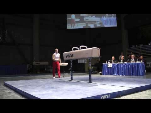 Paul Hamm - Pommel Horse - 2012 Winter Cup Prelims