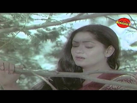 Swathu (1980) Non Stop Malayalam Movie Songs | Music  By G Devarajan video
