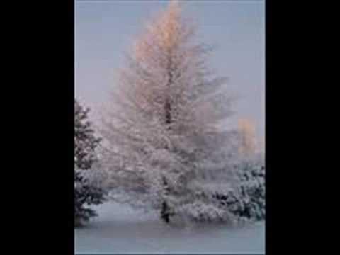 Anthony Parviainen - Sylvian Joululaulu