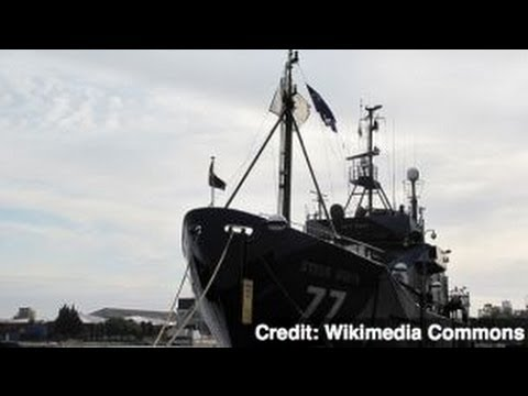 Anti-Whaling Boat Sea Shepherd Clashes With Japanese Whalers