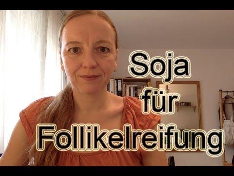Eizellreifung verbessern mit Soja // KINDERWUNSCH mit 40