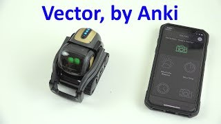 Vector the Good Robot, by Anki (Unboxing and First Look!)
