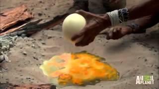 Video clip CLip Độc Lạ Hài