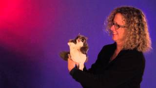 Folkmanis® Flying Squirrel Puppet Demo