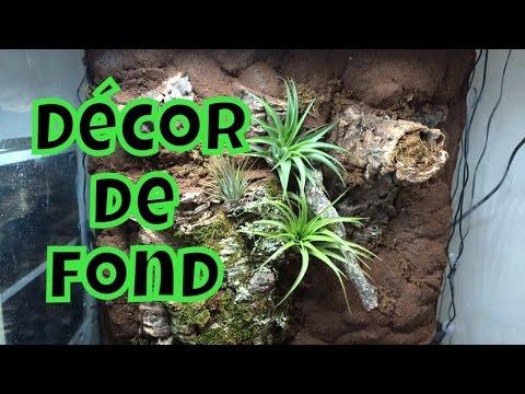 Fabriquer un d cor de terrarium page 1 10 all - Decor fond terrarium desertique ...