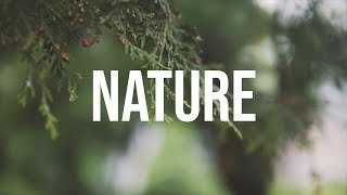 Nature | Sony a6500 | Sigma 30mm 1.4 | 120 | 4k