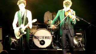 Watch Noah & The Whale Wild Thing video