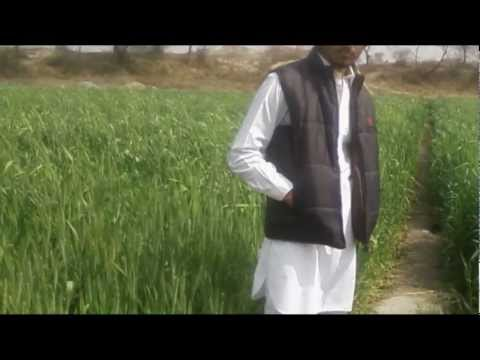 Mr Jatt Chandigarh Waliye Offical Video 2012 New By Jatinder Ferozepur Wala video