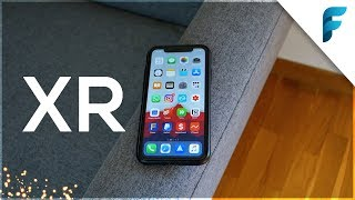 7 Mesi con iPhone XR - Che ne penso? (2019)
