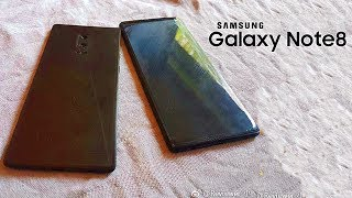 Galaxy Note 8 Dummy | Galaxy S7 Edge Has the Best Display!