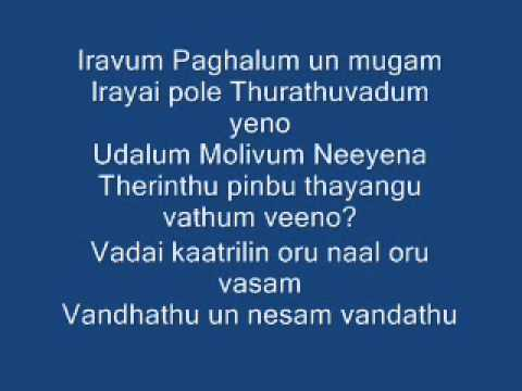 Adiye Kolluthey With Lyrics (vaaranam Aayiram) video