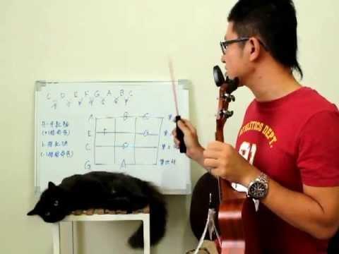 05【烏克麗麗ukulele】基礎教學4 琴格上的空白之 升降記號篇