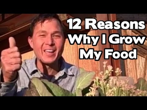 12 Reasons Why I Grow My Fresh Food - Fruits and Vegetables in my Front Yard