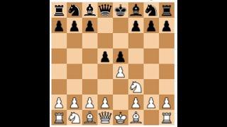 Chess Opening: Elephant Gambit