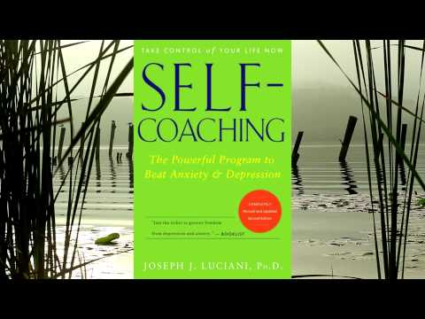 Self-Coaching: Synopsis