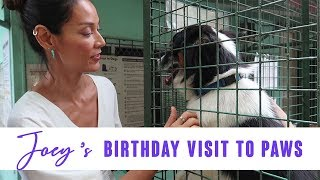 Visiting PAWS for Joey's Birthday, (2018)