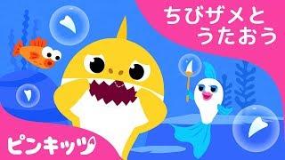 ちびザメ はが ぬけたよ   サメのかぞく   ちびザメとうたおう   どうぶつのうた   ピンキッツ童謡