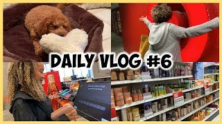 Daily VLOG #6 | Target AGAIN!? + HomeDepot & Pet Store w/ Doggie!