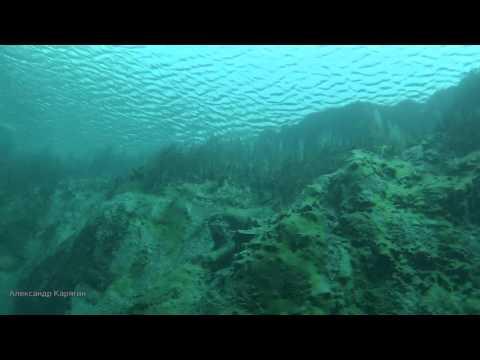 Загадочное Голубое озеро #Samara #Russia