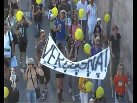 Parte 2 su 2:Marcia contro Green Hill e Vivisezione Animali – 2 ottobre 2011
