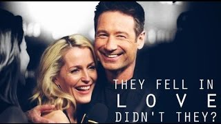 gillian & david   they fell in love, didn't they? (for kimmy)