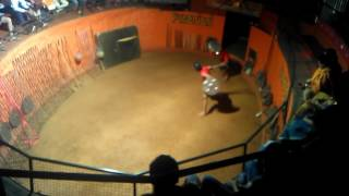 Kalaripayattu-indias lost martial arts