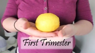 MY FIRST TRIMESTER - Pregnancy Update Baby #2
