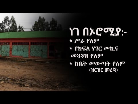 BBN Daily Ethiopian News August 22, 2017