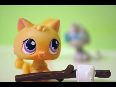 Littlest Pet Shop: The Summer Camp: Part 1 klip izle