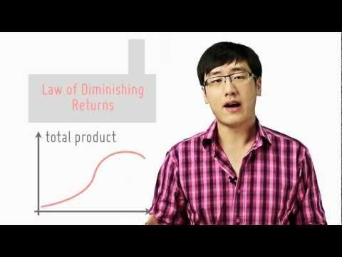 understanding the law of diminishing returns in economics