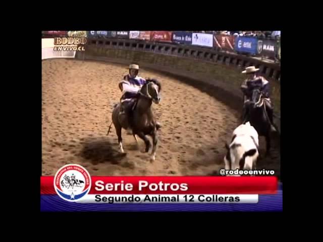 SERIE POTROS CAMPEONATO NACIONAL 2014