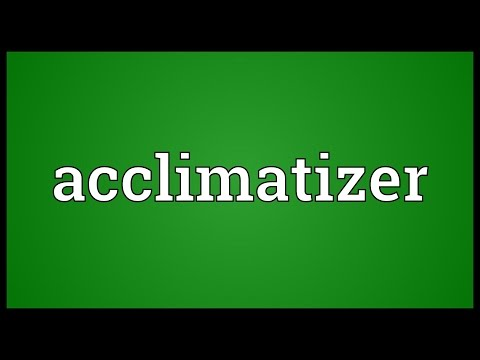 Header of acclimatizer