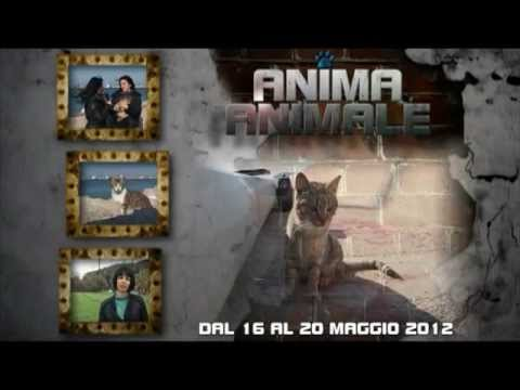 Promo per la 5ª puntata del format ANIMA ANIMALE – Tancri Produzioni Video
