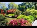 Download Top Tourist Attractions in Brooklyn: Travel Guide New York, United States in Mp3, Mp4 and 3GP