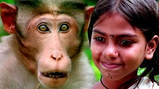 Bollywood Full Movies - Malli - मल्ली -New Hindi Dubbed Movies– Kids Jungle Film-Latest Comedy Movie