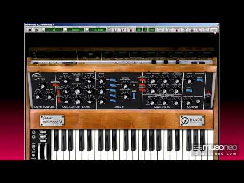 Musoneo - Synthesizers - creating a solo synth patch on Minimoog V - english tutorial