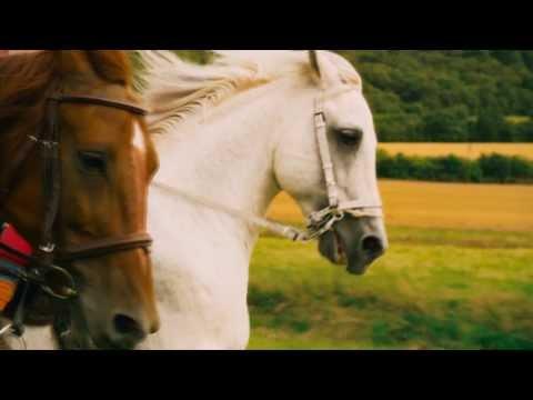 Bibi & Tina - Der Film - Titelsong | Musikvideo (HD)