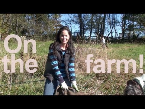 On the Farm – T pronunciations, kinda, and reductions!