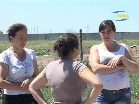 Конфликт на птицеферме  в селе Нерубайское