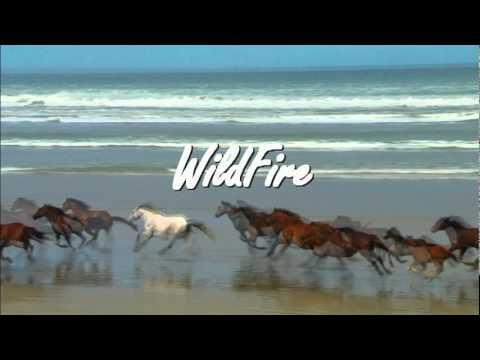 Michael Murphy Wildfire Wildfire Michael Martin