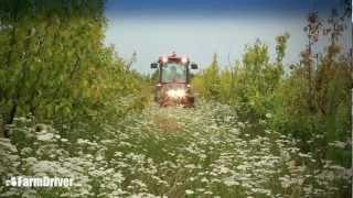 Ciągnik - Ciągnik sadowniczy Case Quantum 65V |Ciągnik - Ciągnik sadowniczy Case Quantum 65V|mqdefault